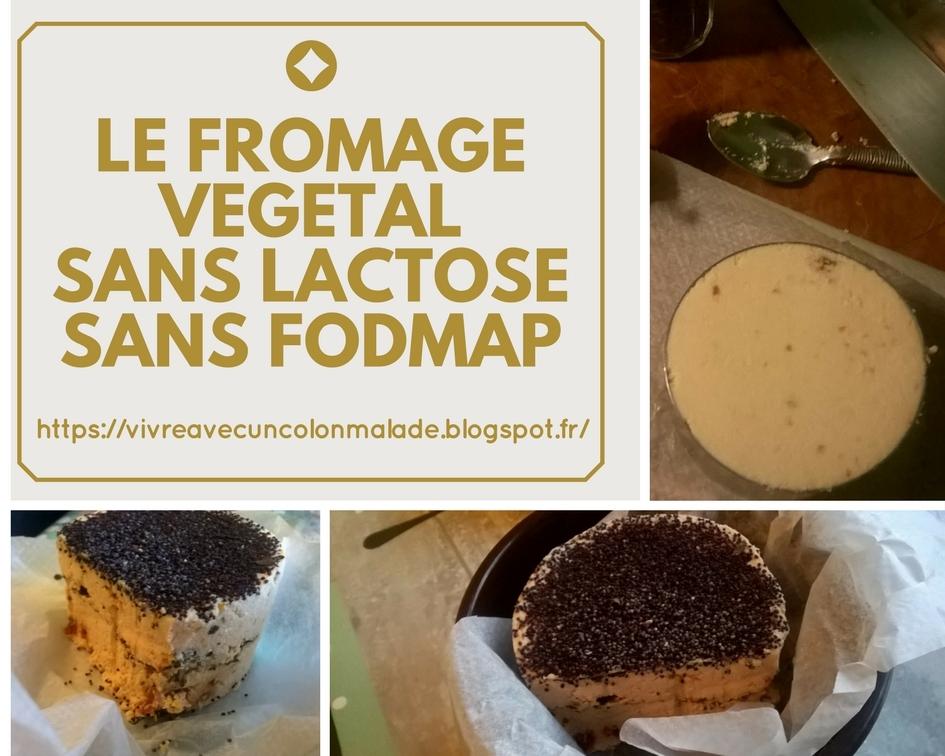 Read more about the article Faux-mage: le fromage sans lactose, végétal et pauvre en FODMAP
