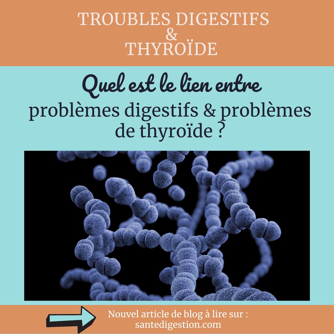 Read more about the article SIBO et thyroïde, des liaisons dangereuses…